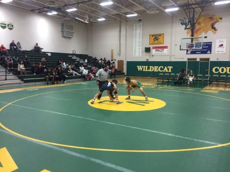 Weight Regulations Give New Face to High School Wrestling