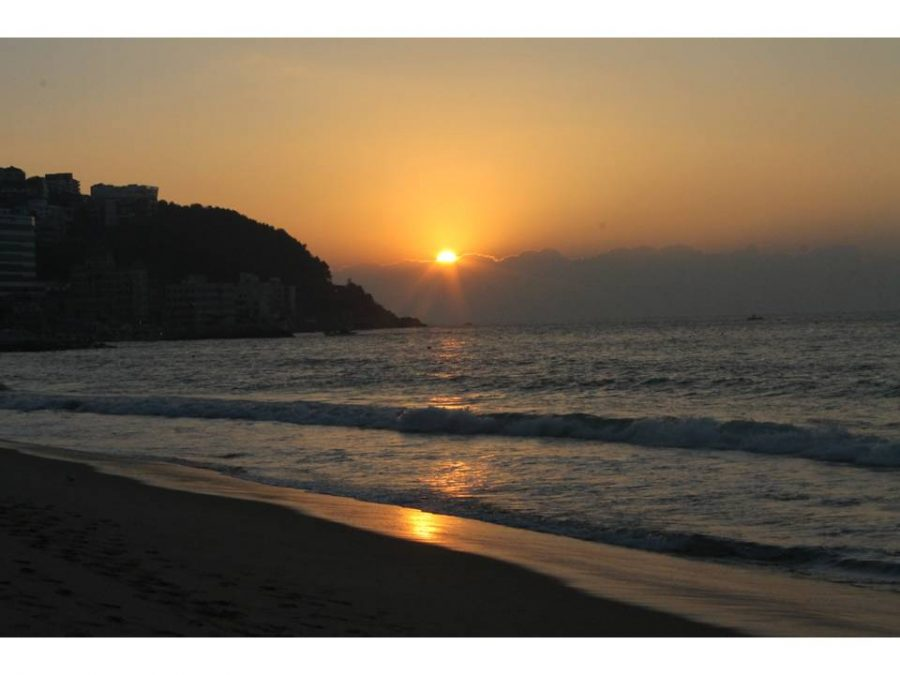 This is the view from the beach walks we took nearly daily. The sunrises were worth the early wake up time.