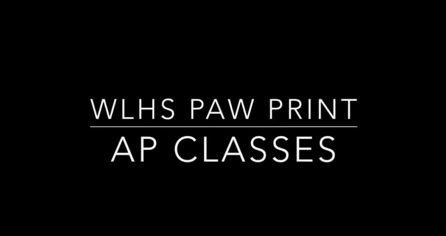 Wilde Lake's AP Students Reflect on Their Classes